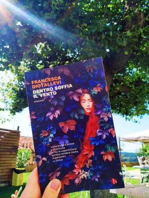 Dentro soffia il vento - di Francesca Diotallevi