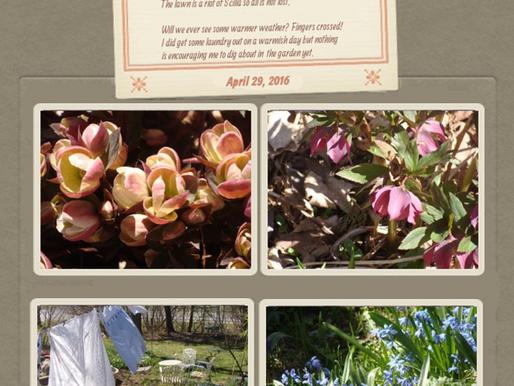 April in the Garden April 29, 2016