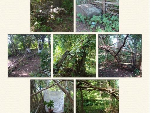 A Stroll Through the Lilac Grove! September 11, 2014