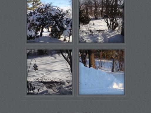 The Biggggg Snow! February 16, 2016