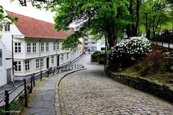 Streets of Stavanger