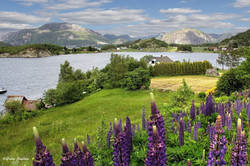 Stavanger Countryside