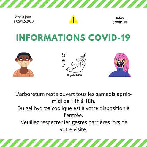 Covid 5.12.2020.png
