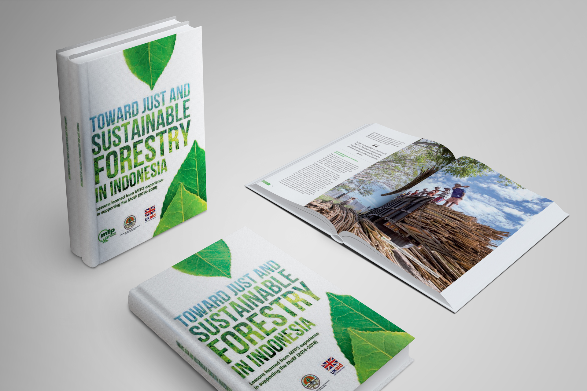 Multistakeholder Forestry Programme Book