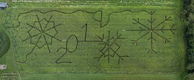 corn maze 2019.jpg