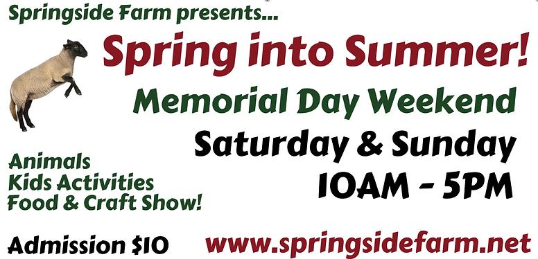 spring into summer website.png