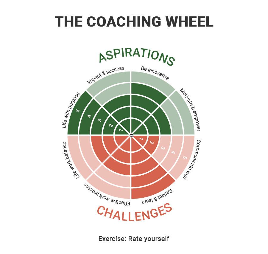 Coaching Wheel by CSA