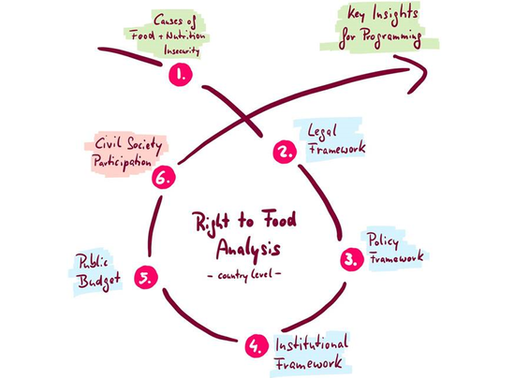 A Framework for Analysis: Is the Right to Food realised in my country?