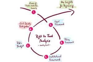 Right to Food Analysis