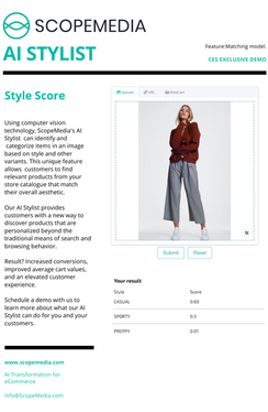 Style Score