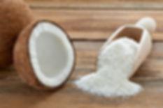 Organik, Glutensiz, Hindistan Cevizi Rendesi