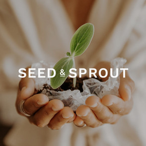 Seed & Sprout