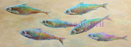 Coloured Fishes long oblong 59 small mar