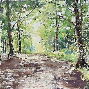 Avery Sunlight through the trees at Stockhil for brochure.jpg