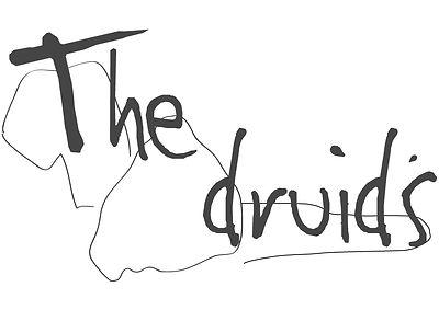 Druids logo.jpg