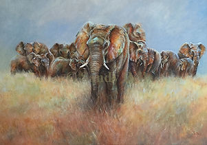 ELEPHANTS GROUP marked small.jpg
