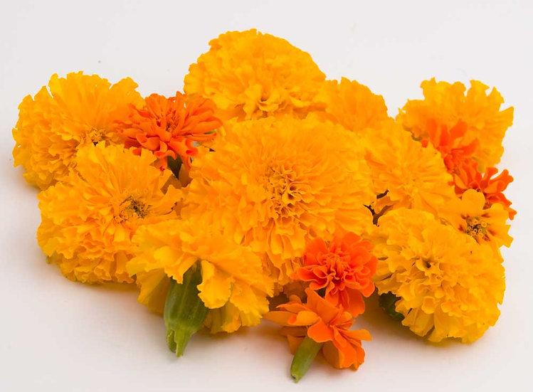 פרחי מאכל אורגני- מארז
