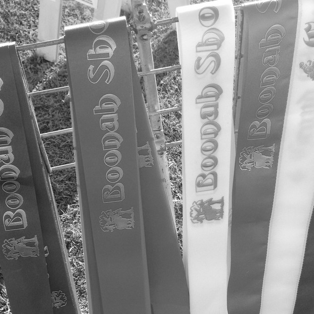 show ribbons bw.JPG