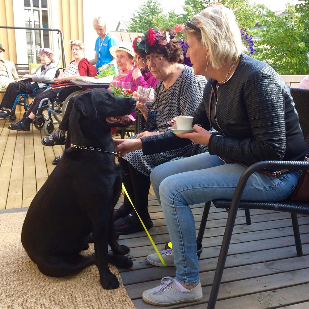 """Hunden Niki kom och hälsade på """"mommo"""" Anja"""