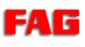 logo FAG.jpg