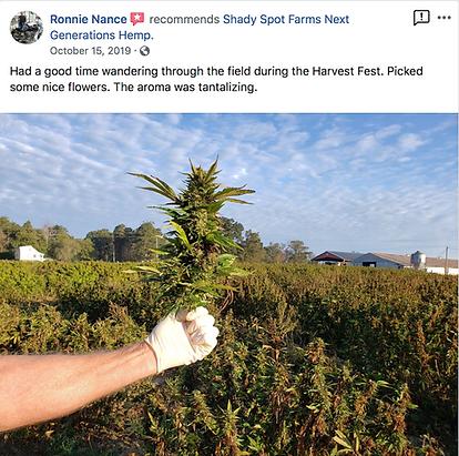 Pick your own hemp