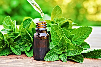 The mint extract in a small jar. Selecti