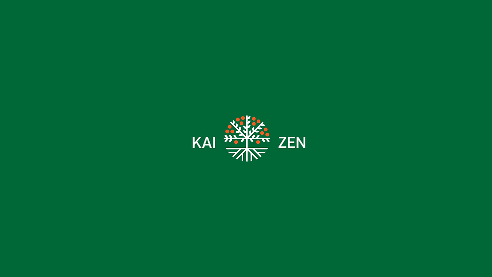 Kaizen Finance Logo-08.png