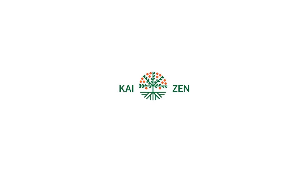 Kaizen Finance Logo-07.png