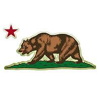 CA-Bear-icon-2.jpg