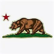 CA-Bear-icon-2_edited.jpg