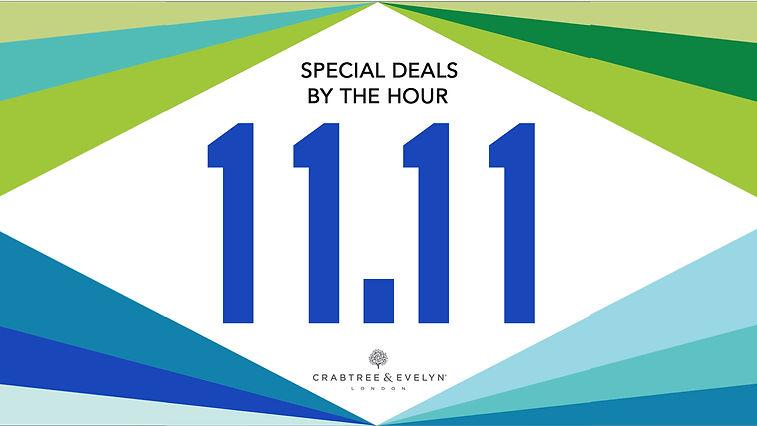 11.11 event banner.jpg