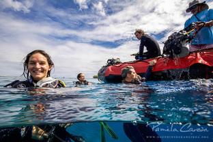 Volontariat plongée