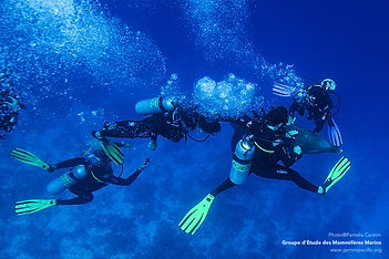 Écotourisme Polynésie