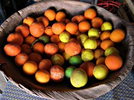 Patrimônios na panela: encontro discute a cultura alimentar das tradições