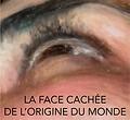 Lafacecachee.png
