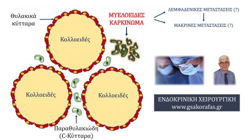 Μυελοειδής καρκίνος θυρεοειδούς - Παράγοντες που σχετίζονται με την πρόγνωση