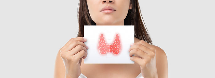 Illustration%20of%20the%20thyroid%20in%2