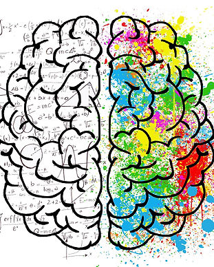 brain-2062057_1920.jpg