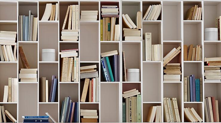ligne roset book & look