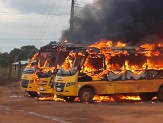 Ônibus são destruídos pelo fogo e polícia apura se incêndio foi criminoso