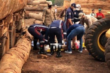 Urgente dono de madeireira morre esmagado por tora no interior