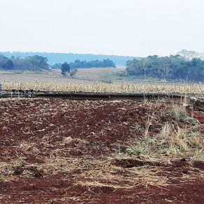 Chuva de granizo deixa diversos estragos e ventos derrubam postes da rede elétrica