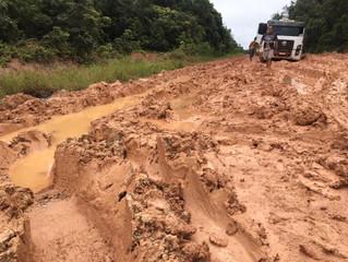 Criadores de Peixes de Rondônia otimistas com restauração da BR-319