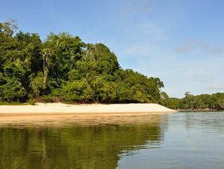 Decreto vai regulamentar visitação a parques estaduais de Rondônia