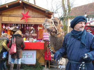 Weihnachtsmarkttermine.