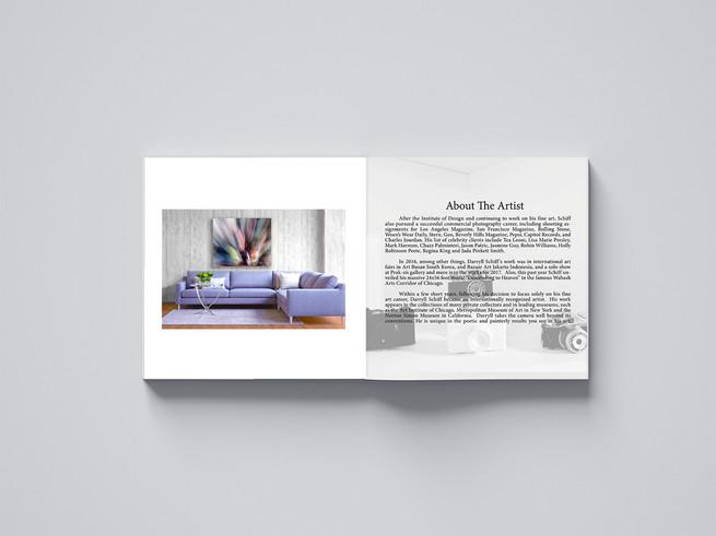 DSFA Artbook Design (Hardcover)