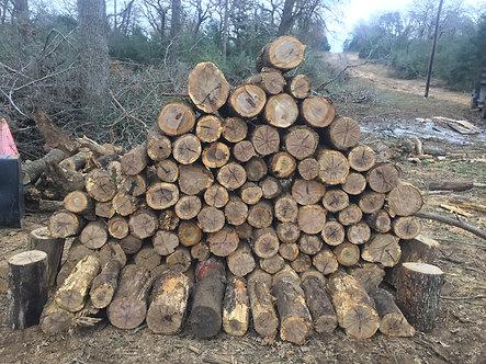 Oak Stump (add on only)