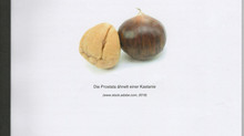 Gutartige Prostatavergrösserung
