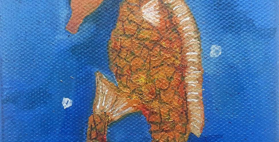Seahorse for Sacha