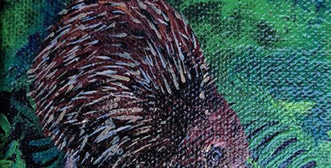Kiwi For Caiden